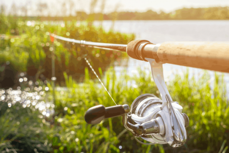 Bank Fishing Rod Holders: Which is the best suited for you